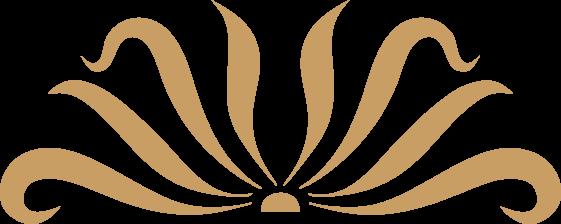 logo villa blanche_solo_logo